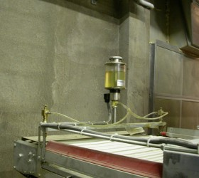 VALLI_EggConveyors-(11)