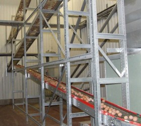 VALLI_EggConveyors-(23)