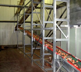 VALLI_EggConveyors-(32)